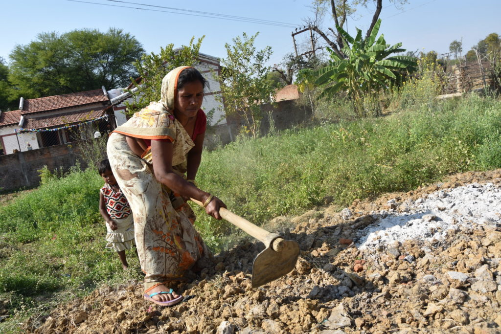 Bumper crop of women farmers emerges in India